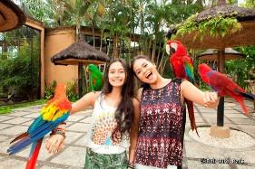 Bali-Bird-Park-281x187