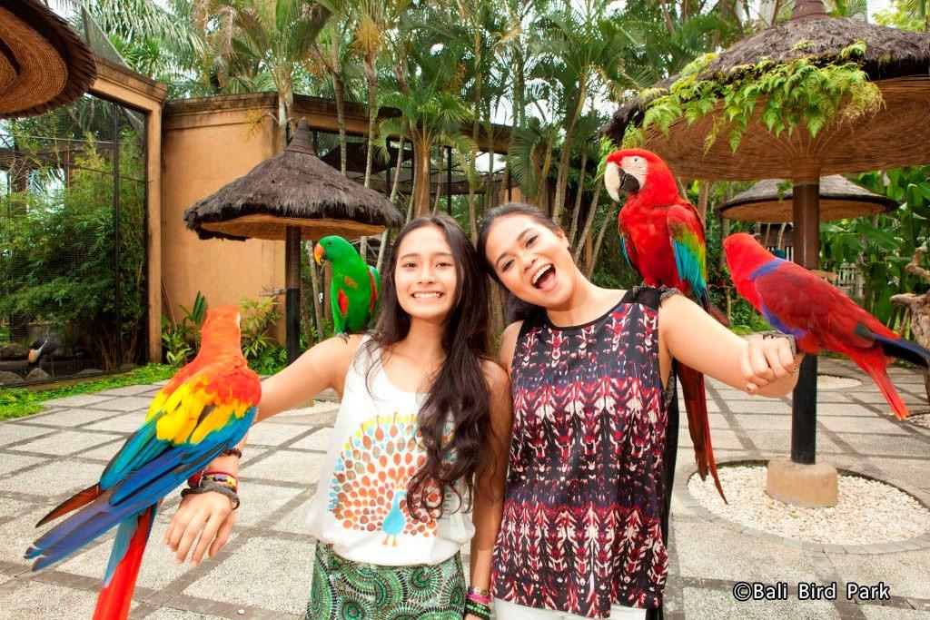 Bali-Bird-Park-__Reptile-Park-Pilihan-Wisata-Keluarga-Di-Bali