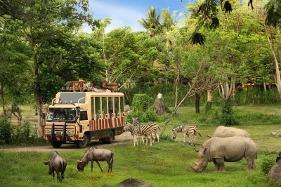 Bali-Safari-Marine-Park-Tour-281x187