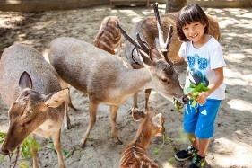 Bali-Zoo-Park-Tour-281x187