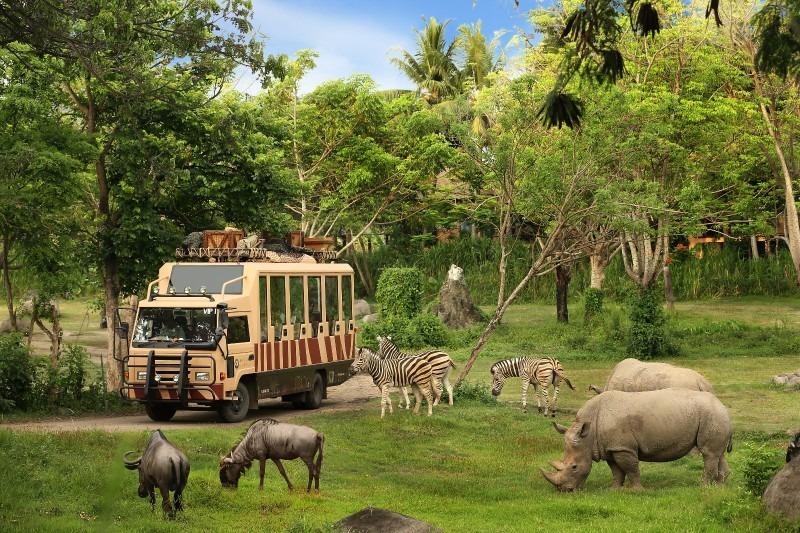 full_safari-journey-2_